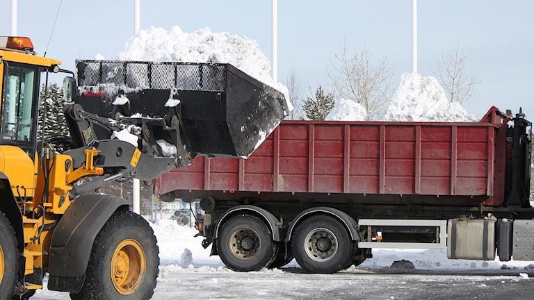 Traktor med snö i skopan och lastbilsflak med snö