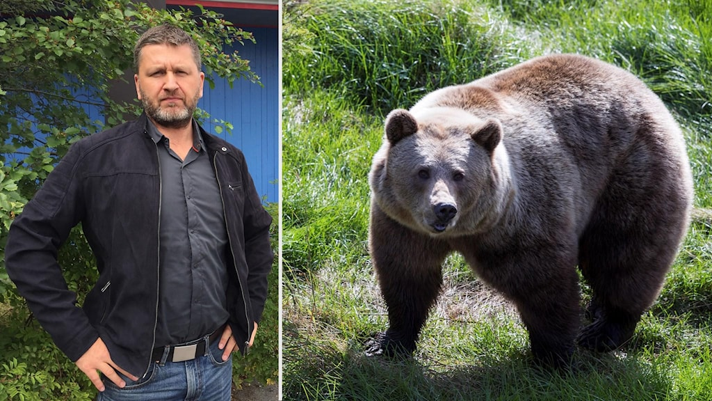 Martin Trostemo, polis / björn