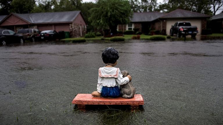 Trädgårdsstaty i form av barn med hund syns i översvämmat område.