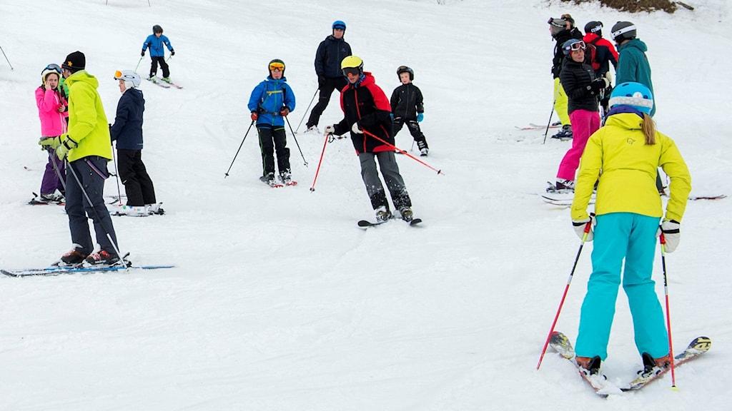 Slalomåkare åker i slalombacke