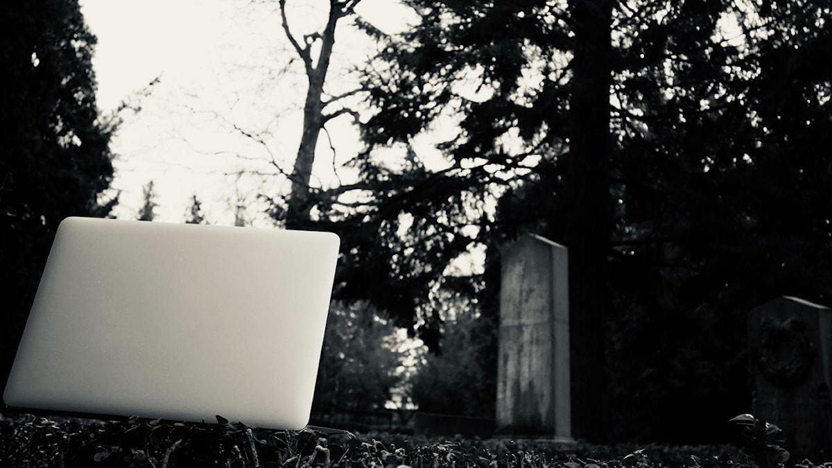 Framtidens gravsten - en digital minneslund i de sociala medierna?
