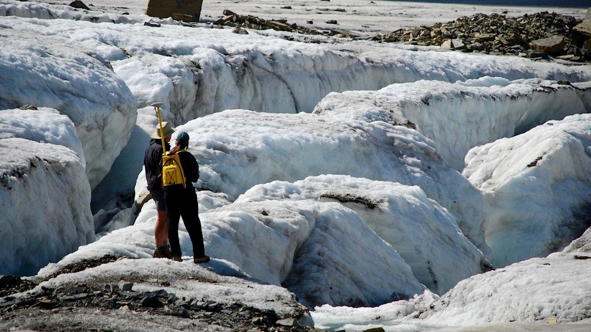 Glaciärmätning. Bild: USGS