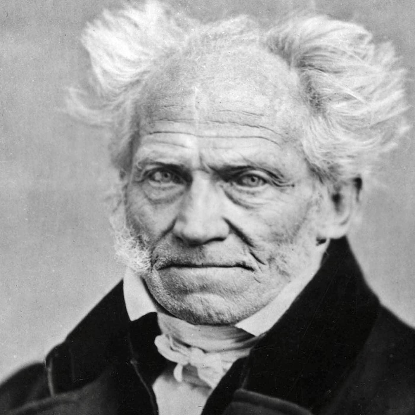 Schopenhauer, musiken och meningen