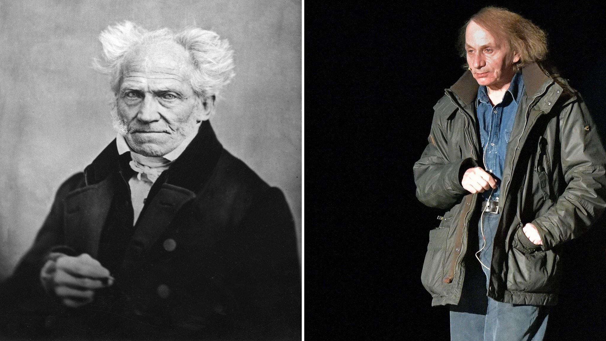 Arthur Schopenhauer och Michel Houellebecq