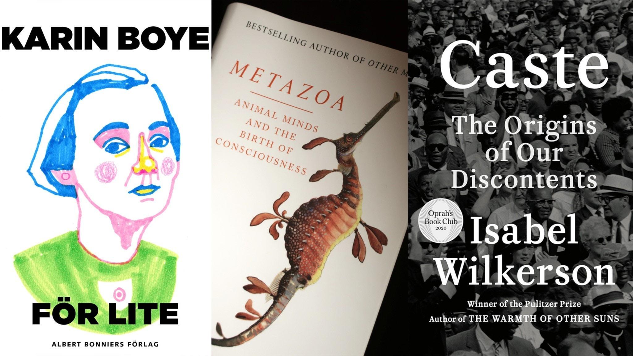 Bild på tre bokomslag: Karin Boye: För lite, Peter Godfrey Smith: Metzoa och Isabel Wilkerson: Caste
