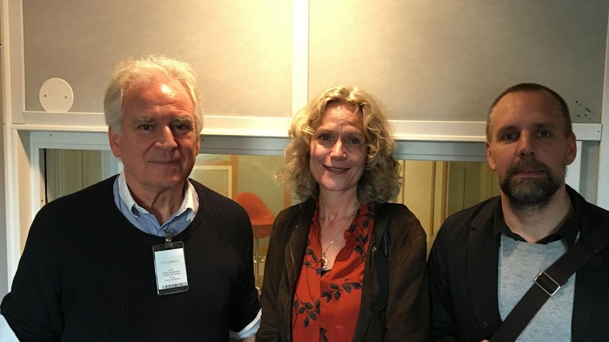 Peter Gärdenfors, Åsa Wikforss och Gustaf Gredebäck.