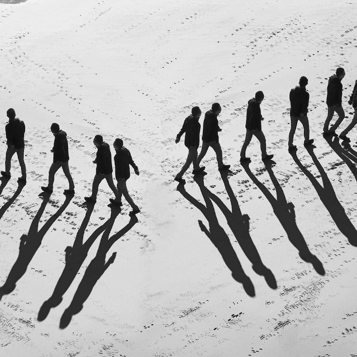 Polariseringens näring och motgift