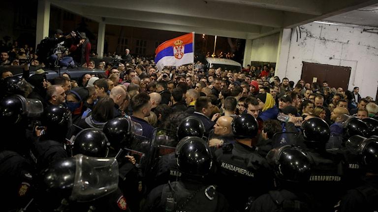 Serbiska poliser motar bort demonstranter.