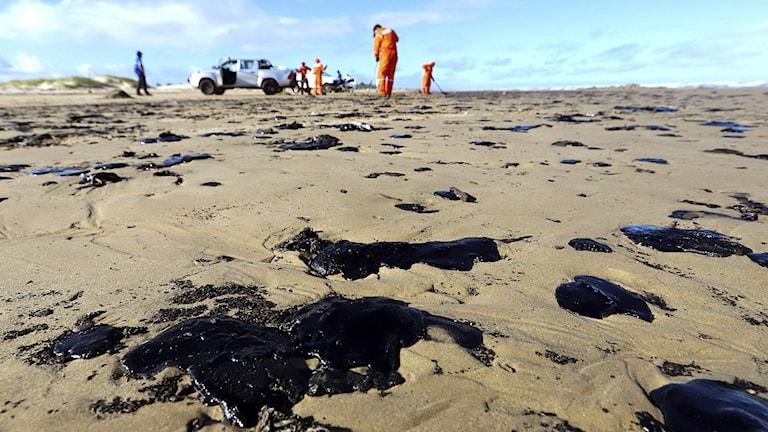 Oljefläckar på en sandstrand med personer som går runt och sanerar.