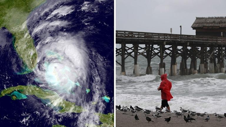 Montage ihopsatt om orkanen Matthew