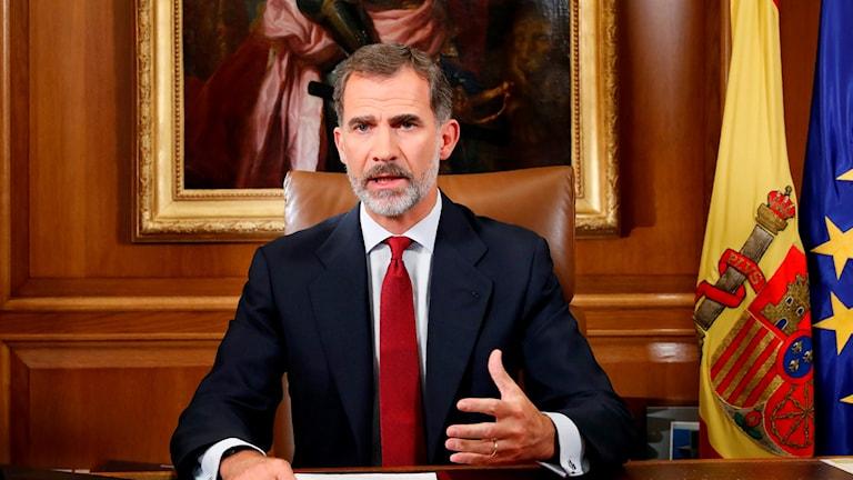 Spanska kungen håller tal.