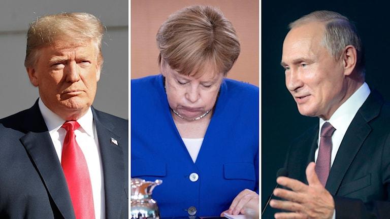 Trump, Merkel och Putin