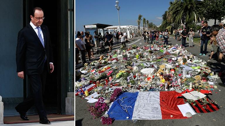 Hollande är pressad av den politiska oppositionen efter attacken i Nice. Foto: TT.