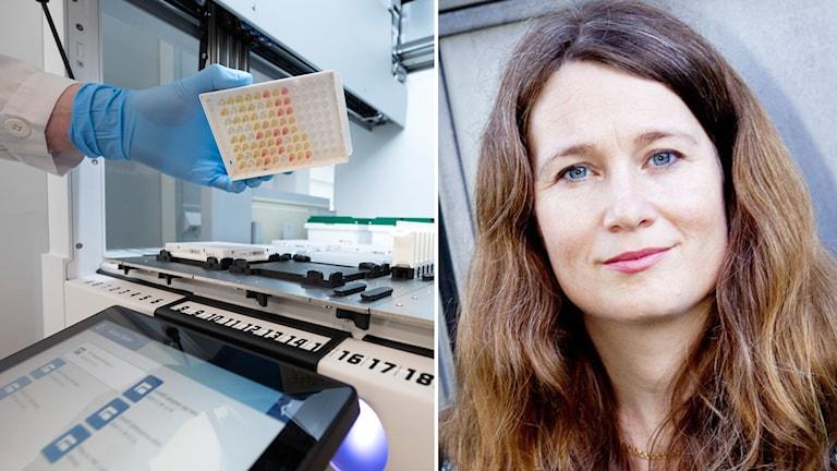 Vetenskapsradions Ulrika Björkstén.