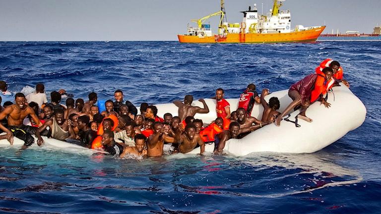 Medelhavet, migranter