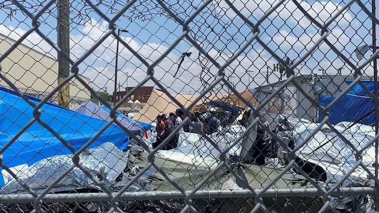 Bild från ett migrantläger i New Mexico, USA.