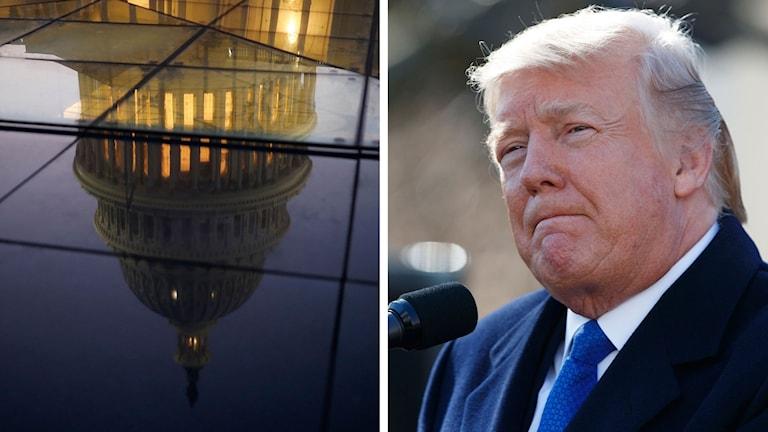 Split-Trump-Capitol