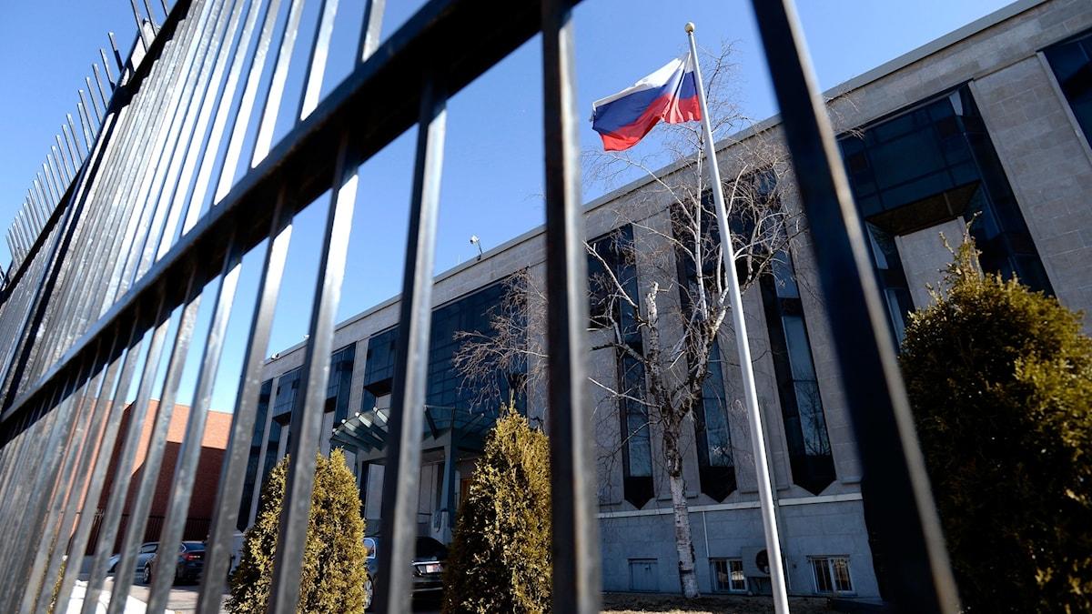 Ryska flagga