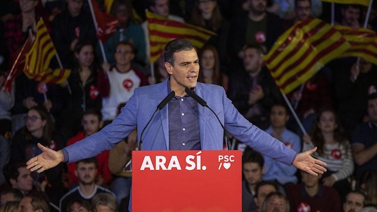 Socialistpartiet PSOE väntas bli störst i det spanska valet