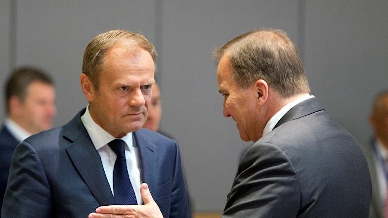 Donald Tusk och Stefan Löfven under EU-toppmötet