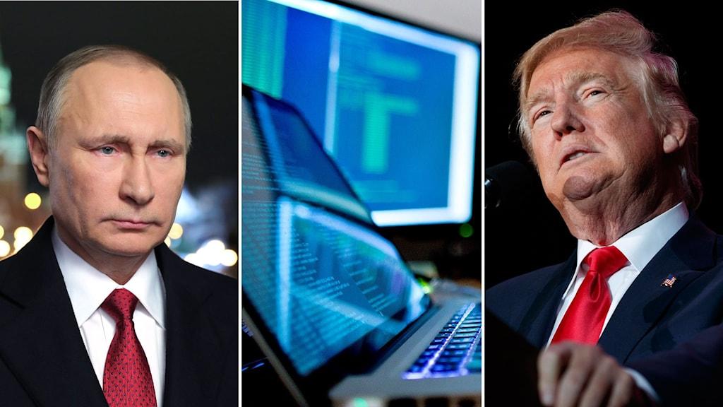 Tredelad bild: Putin ser allvarlig ut, en bild på två datorskärmar och Trump som ser fundersam ut