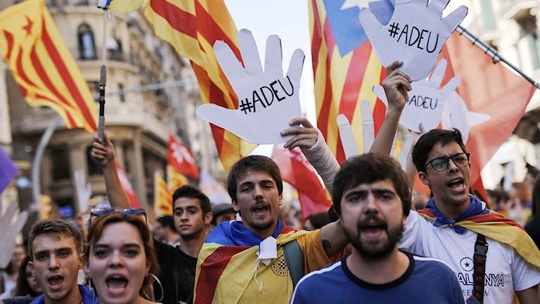 """På fotot syns demonstranter som har katalanska flaggor och bilder på händer. På händerna står det """"hejdå""""."""