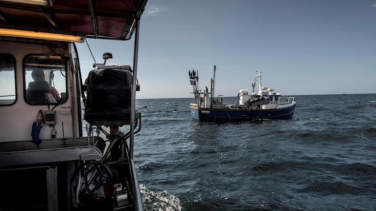 Fiskebåtar ute i arbete