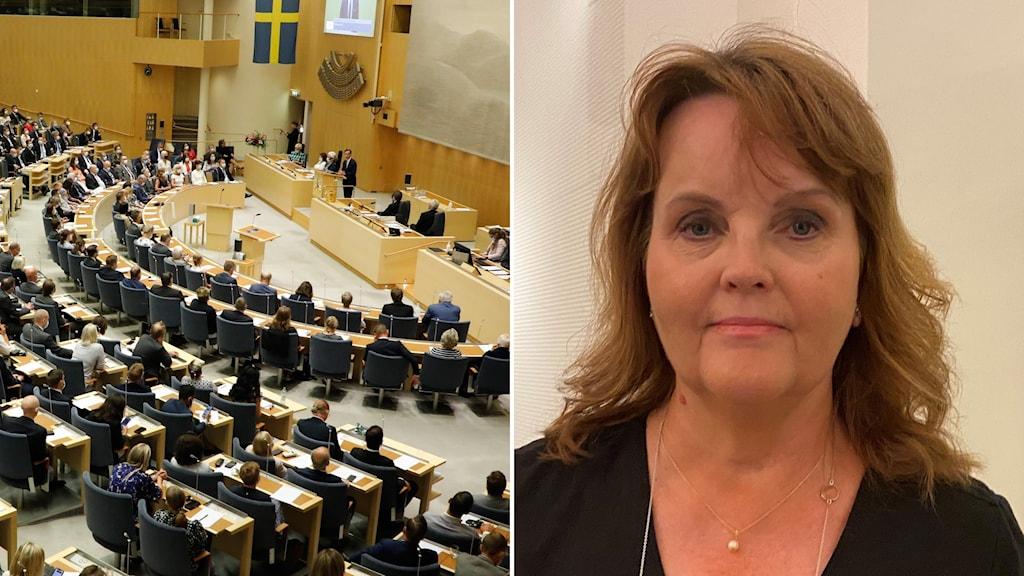 Liberalernas Nina Lundström och riksdagen.