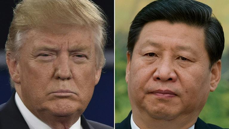 USA:s president Donald Trump till vänster, Kinas ledare Xi Jinping till höger.