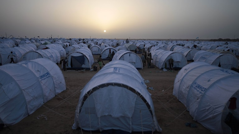 150 000 syrier har återvänt från Jordanien
