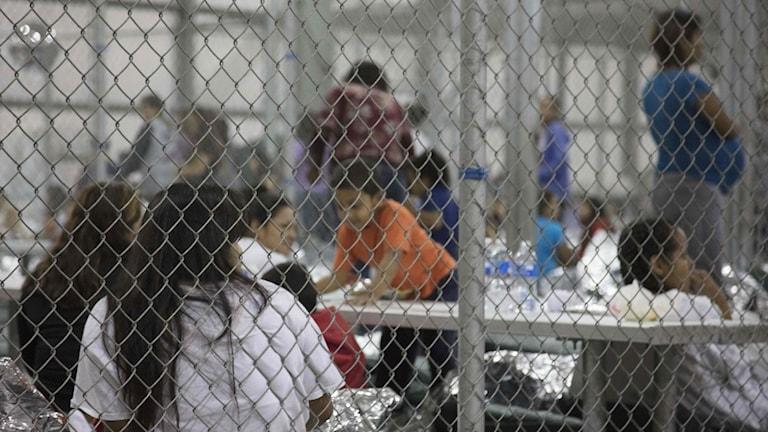 Människor som sitter i burar.