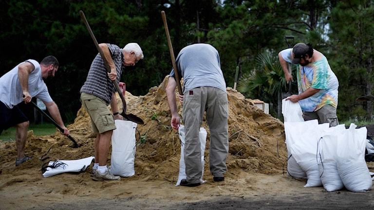 Människor förbereder med sandsäckar för orkanen i Panama City, Florida. Foto: Brendan Smialowski/TT.