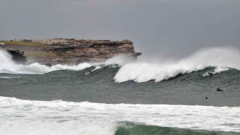 Stora vågor