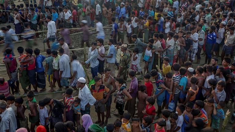 Rohingyer i Bangladesh köar för att få hjälp.