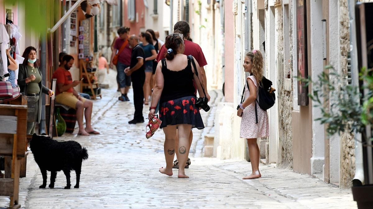 Staden Rovinj i Kroatien.
