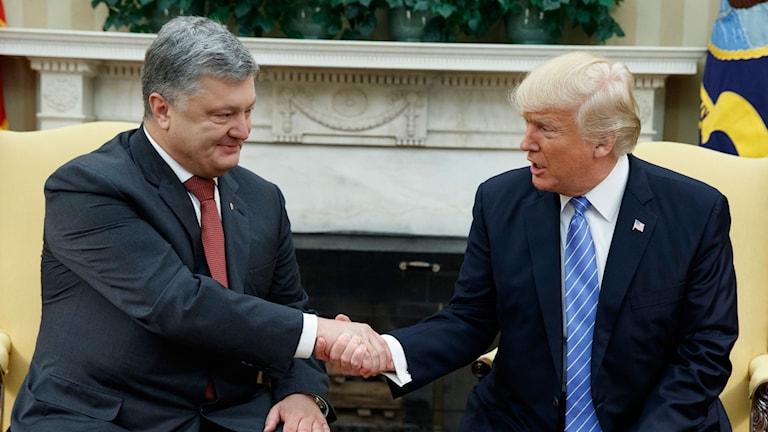 Ukrainas president Petro Poroshenko och USA:s president Donald Trump skakar hand.