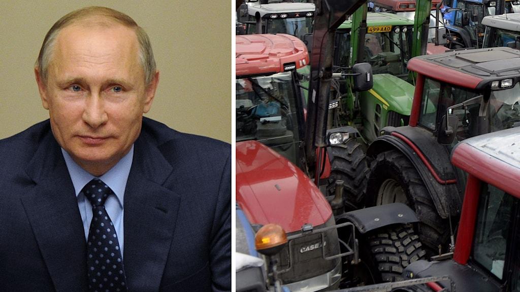 Bondeprotester Ryssland, Putin och traktorer