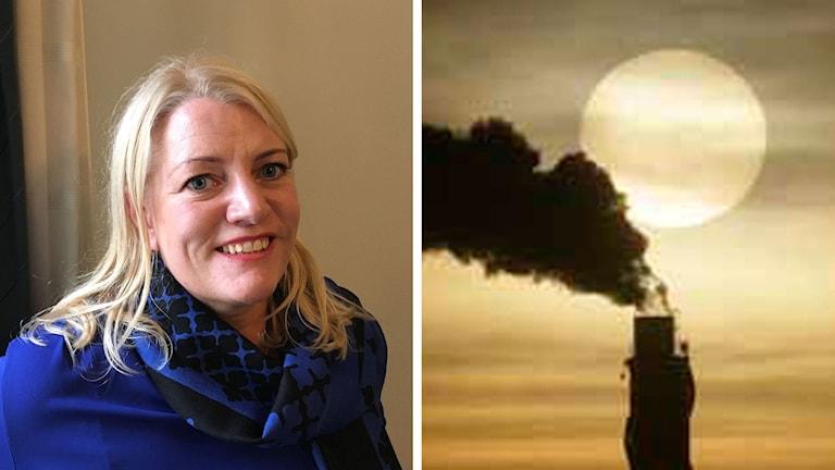 Johanna Lissinger Peitz, svensk chefsförhandlare för klimatfrågor.