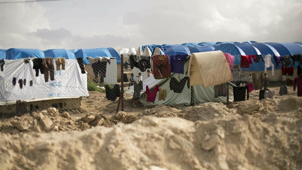 Bilder på tält i fånglägret i Al-Hol i nordöstra Syrien
