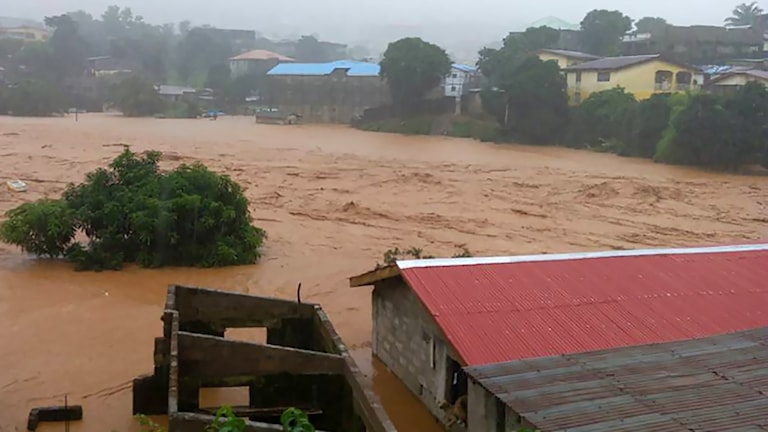 Katastrofen i Sierra Leone. Foto:AFP PHOTO/S4CCC-SL/TT.