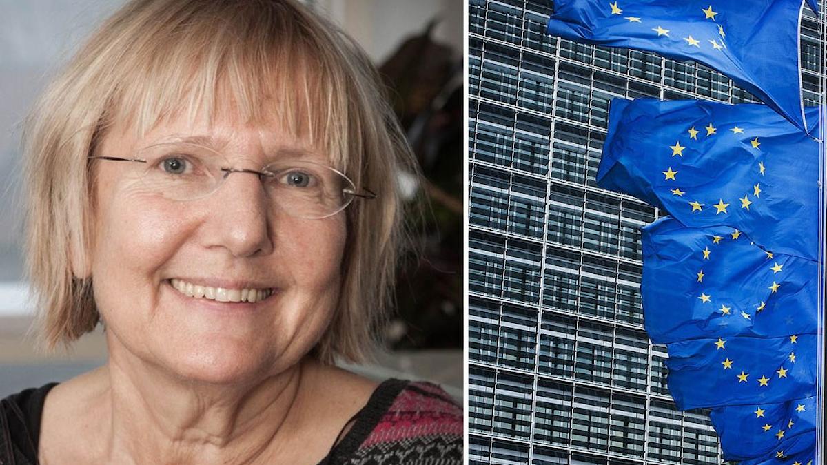 Kollage av Ekots Susanne Palme och EU-flaggor.