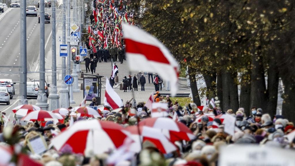 Protester Belarus