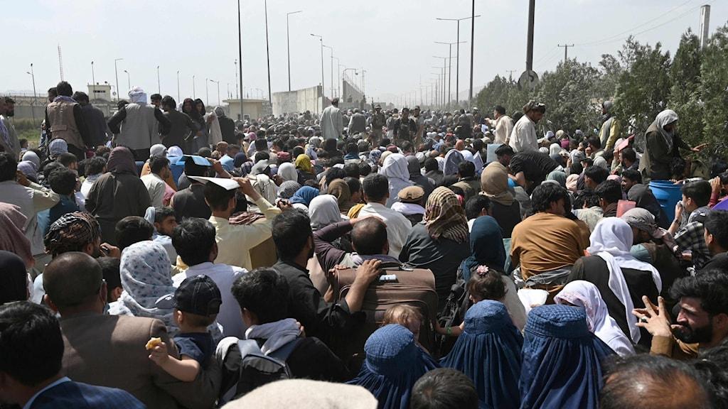 En folkmassa samlas utanför flygplatsen i Kabul.