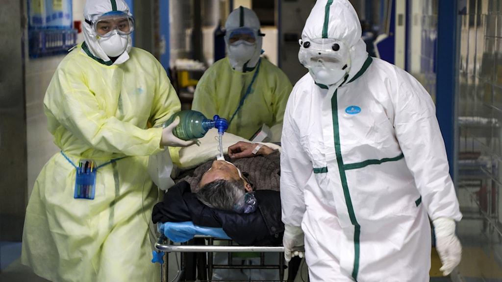 Människor i smittskyddsdräkt. Foto: Chinatopix/AP/TT.