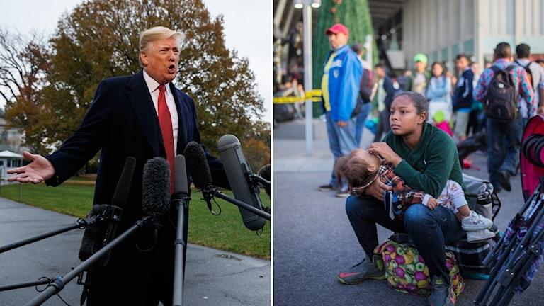 Donald Trump och migranter