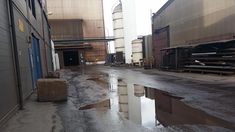 Vattensamlingar vid företaget innehöll mycket höga halter cyanid.