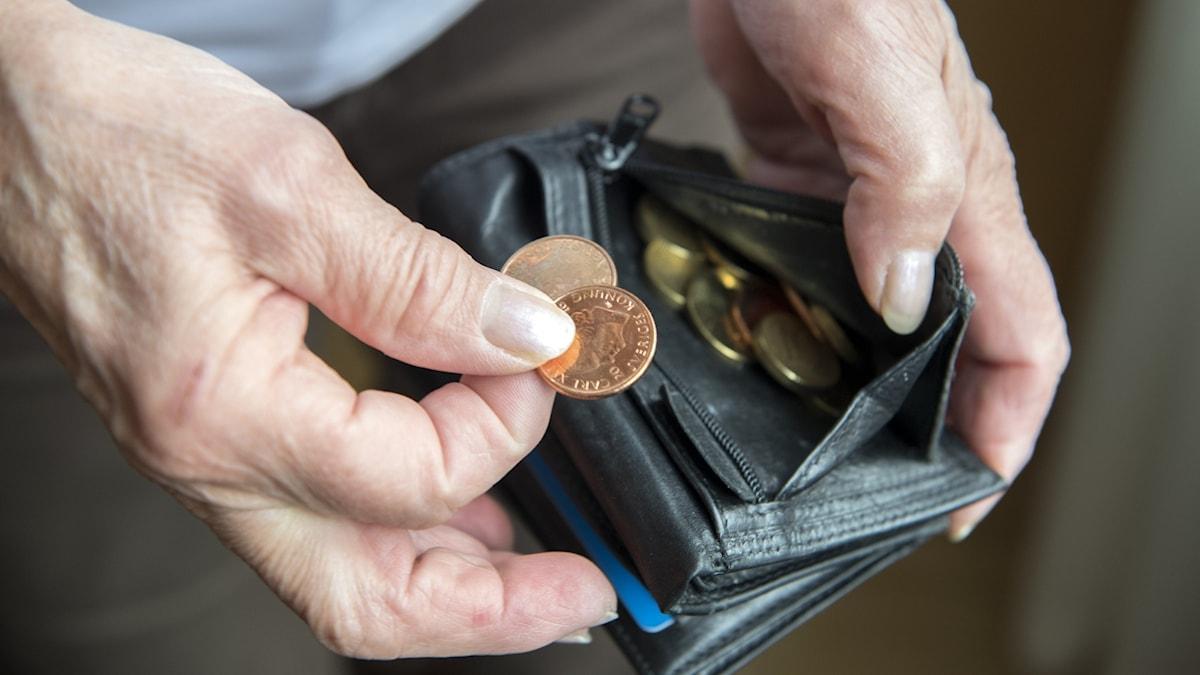 Mynt i plånbok.