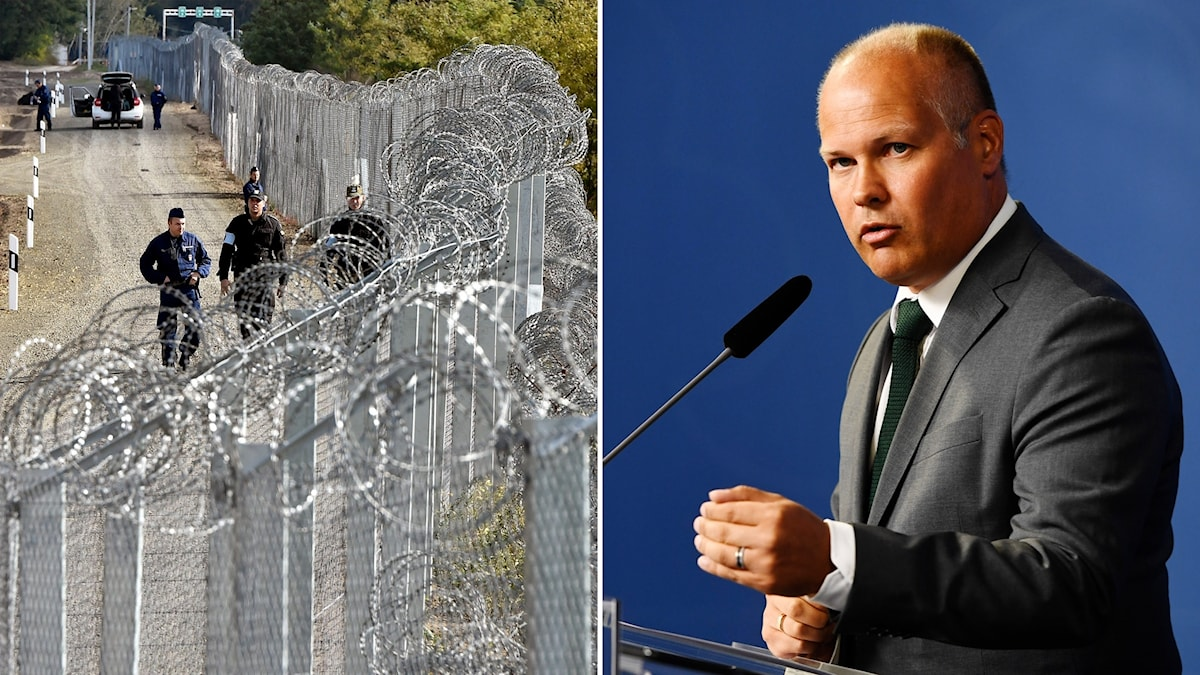 Delad bild: Taggtrådsstaket vid Ungerns gräns, Morgan Johansson med en bestämd min.