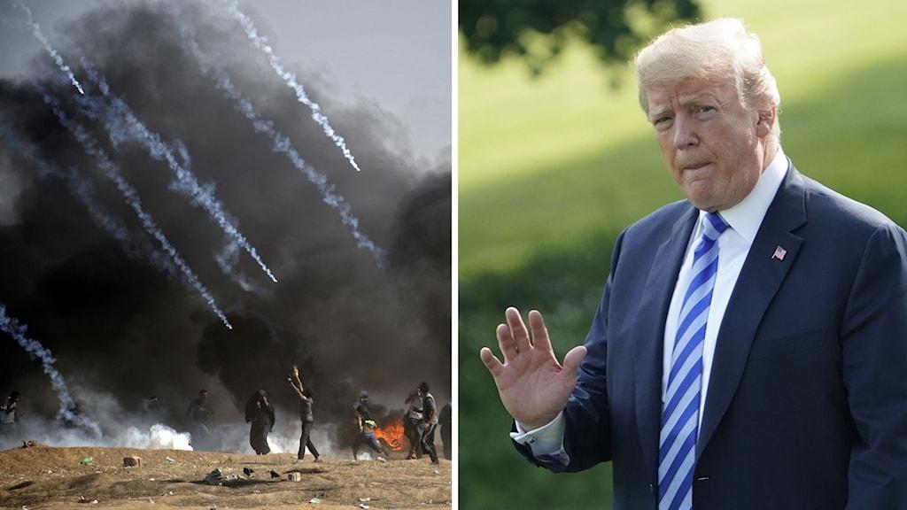 Våld i Gaza och Donald Trump.