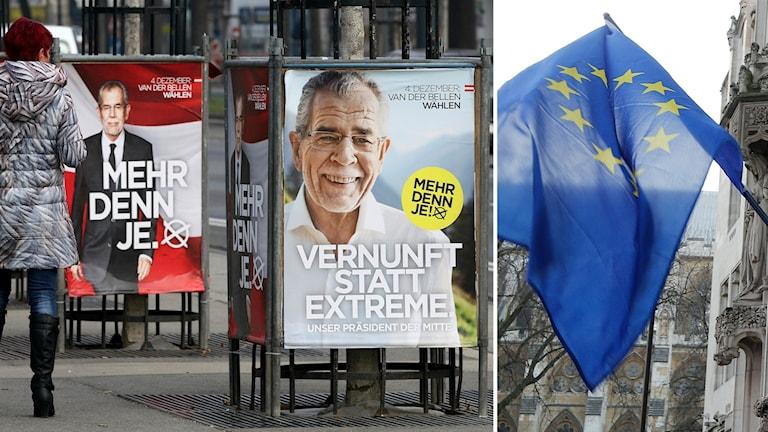 Delad bild: Valaffischer på Alexander Van der Bellen och en EU-flagga.